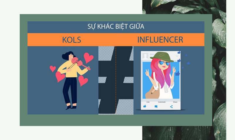 phan-biet-kol-va-influencers