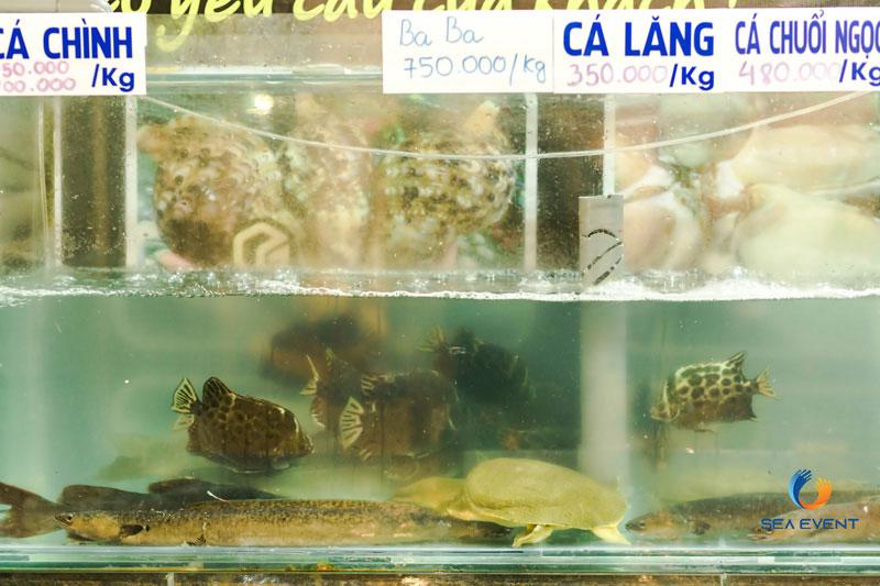 Khai-Truong-Nha-Hang-Dang-Gia-555-Nguyen-Tat-Thanh 15